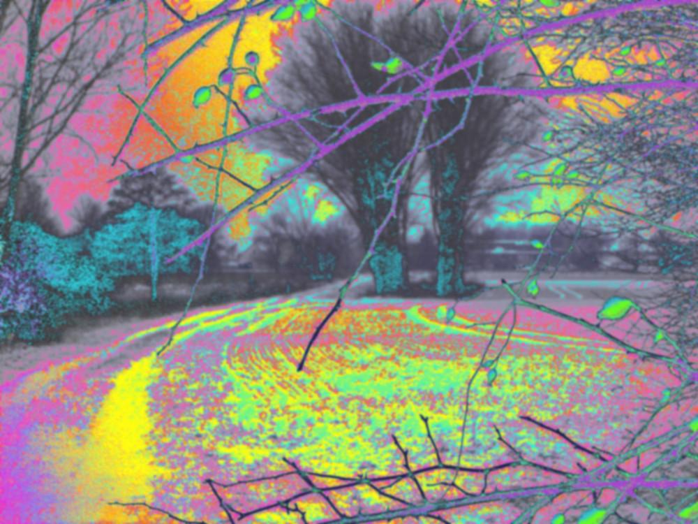 Das Bild zeigt eine unnatürlich eingefärbte Landschaft mit Bäumen, Feldweg und Feldern