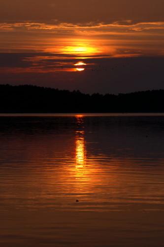 Das Foto zeigt einen Sonnenaufgang über einem See, die Sonne spiegelt sich im See und ist teilweise von Wolken verdeckt, durch die Wolken leuchtet es orange