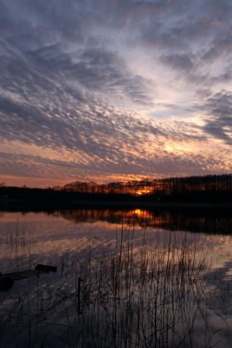 Das Bild zeigt einen Sonnenuntergang am Müritz-Arm, im Vordergrund ist Wasser, Schilf und auf der linken Seite ist ein Steg zu sehen. Etwa in der Bildmitte ist eine Baumreihe, hinter der gerade die Sonne versinkt. Oben ist der Himmel und Wolken