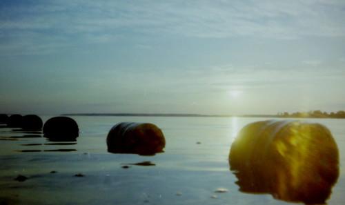 Das Bild zeigt die Sonne kurz vor Sonnenuntergang über einem ruhigen See, es ist eine Gegenlicht-Aufnahme. Im Wasser liegen runde Tonnen.
