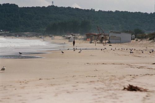 Das Bild zeigt einen fast leeren Sandstrand am Meer und vernagelte Hütten. Dazwischen sind Möwen.