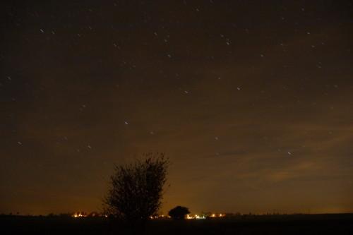 Das Foto zeigt eine Nachtaufnahme, man sieht hinten das beleuchtete dorf und darüber den Sternenhimmel, die Sterne sind schon kurze Striche durch die lange Belichtung. Im Bild sieht man außerdem zwei große Büsche.