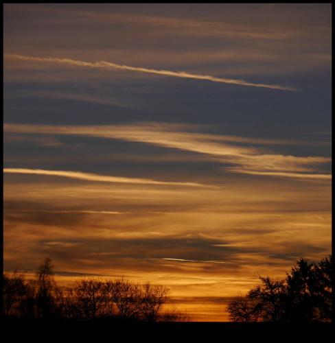 Das Bild zeigt einen Sonnenuntergang, die Sonne scheint durch die Wolken und die sind daher Orange. Im Vordergrund sieht man die Silouette von ein paar Bäumen