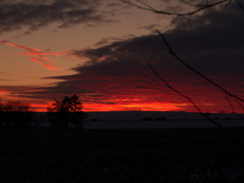 Das Foto zeigt den Sonnenuntergang in einer Winterlandschaft, die Sonne ist schon untergegangen und der Himmel leuchtet intensiv in Orange.
