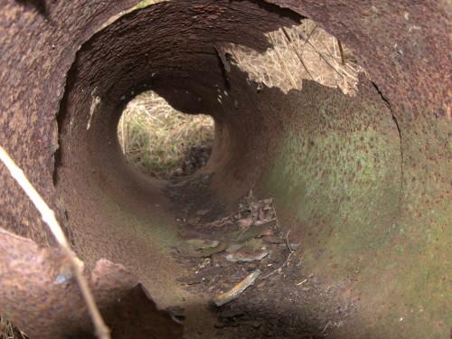 Das Foto zeigt das innere eines uralten, verrotteten und teilweise durchgebrochenen Rohrs