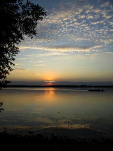 Das Foto zeigt einen Sonnenuntergang am See, die Sonne wird von Wolken überdeckt, auf der linken Seite ist ein Baum, auf der rechten Seite rudert ein 8-er-Ruderboot durch die Dämmerung