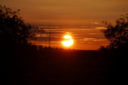 Das Foto zeigt die untergehende Sonne zwischen zwei Büschen, die Sonnenscheibe ist kurz davor, die Erde zu berühren