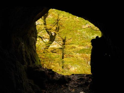 Das Foto zeigt den Blick aus der Höhle Volkmarskeller in den Wald, die Blätter der bäume sind schon herbstlich verfärbt.