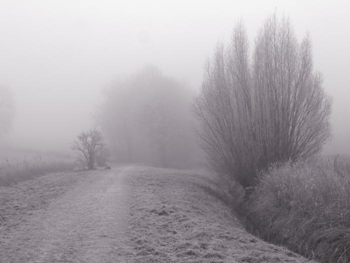 SW-Foto von einem Weg, rechts erahnt man einen Bach, Links am Weg eine Bank und zu beiden Seiten immer mal wieder Bäume