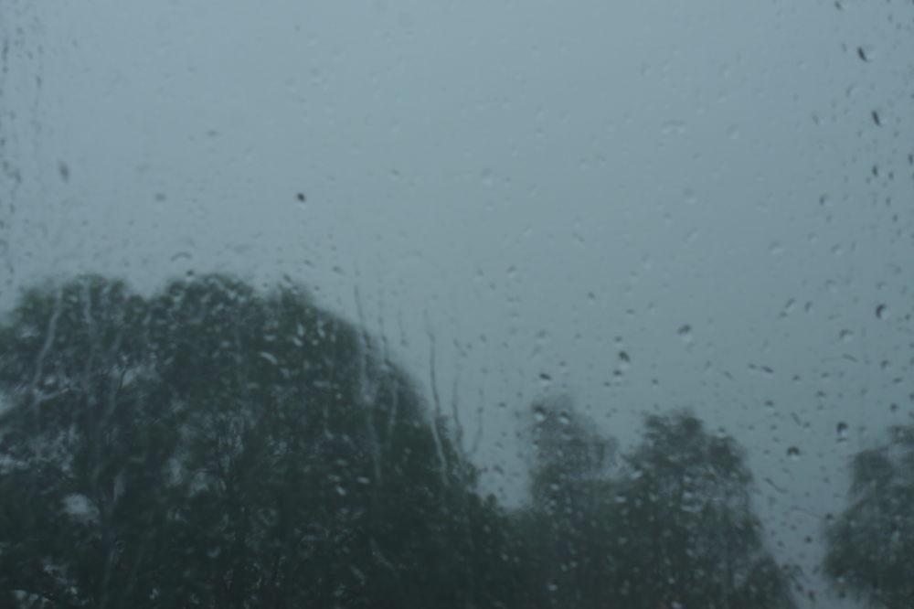 Das Foto wurde durch eine Glasscheibe aufgenommen und zeigt Bäume bei Regen.