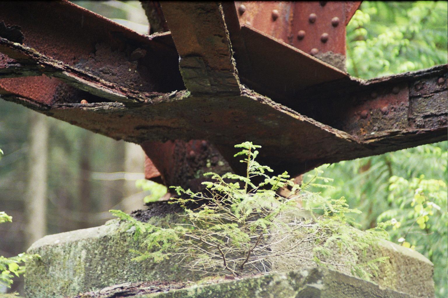 Ds Foto zeigt ein Detail der Brücke: Der Knoten mehrerer verrosteter Träger auf einem Betonpfeiler