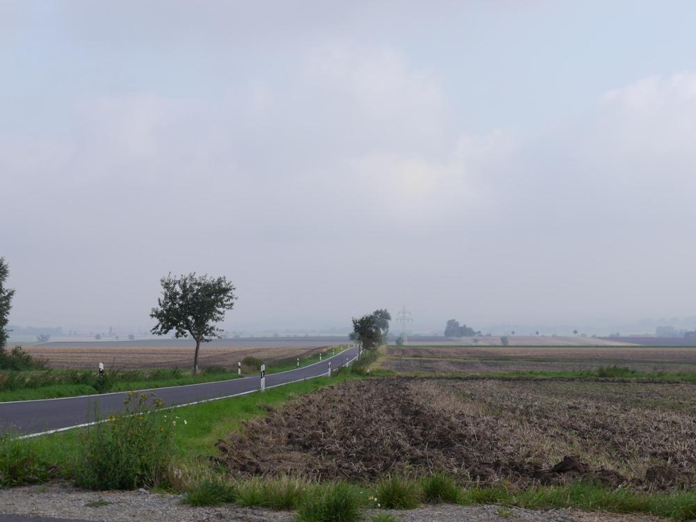 Das Foto zeigt eine Landschaftsaufnahme. In der linken Bildhälfte geht eine schmale Landstraße durch das Bild, der Horizont verschwindet irgendwo im Grau...