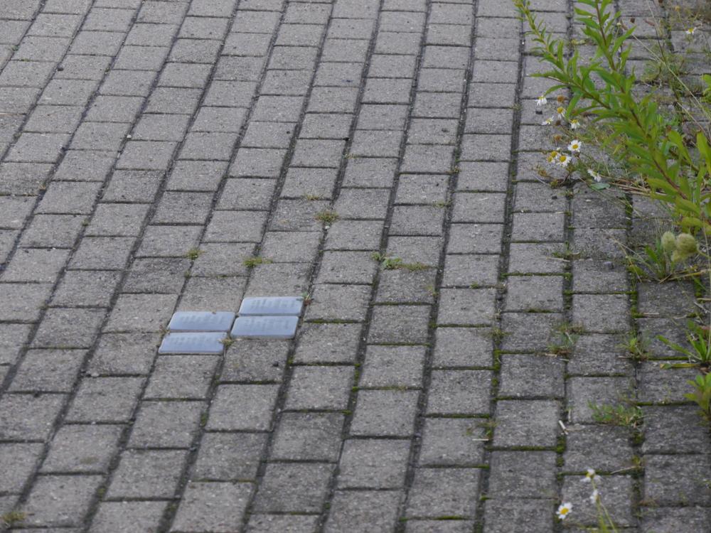 Auf diesem Foto sind die Stolpersteine im Pflaster des Fußwegs gut sichtbar, aber noch nicht lesbar.