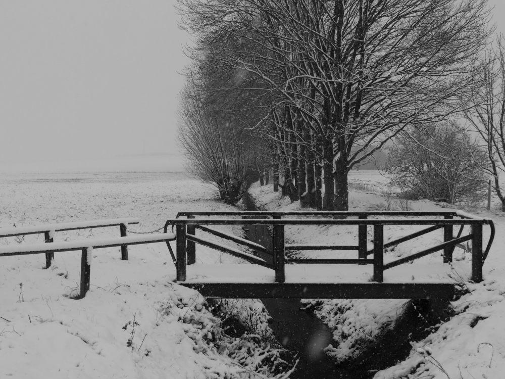 Das s/w-Foto zeigt eine Brücke über einen kleinen Bach bei Schnee und Nebel-