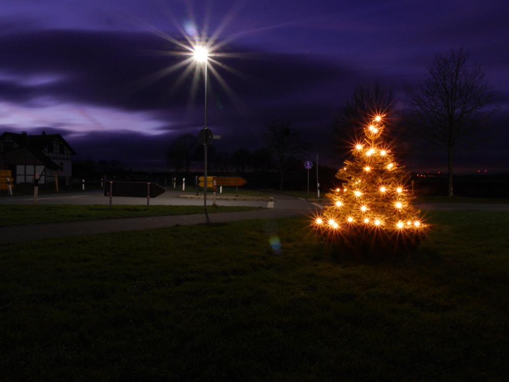 Das Foto zeigt eine Nachtaufnahme von einem beleuchteten Weihnachtsbaum an einer Einmündung, der Baum steht in der rechten Bildhälfte.