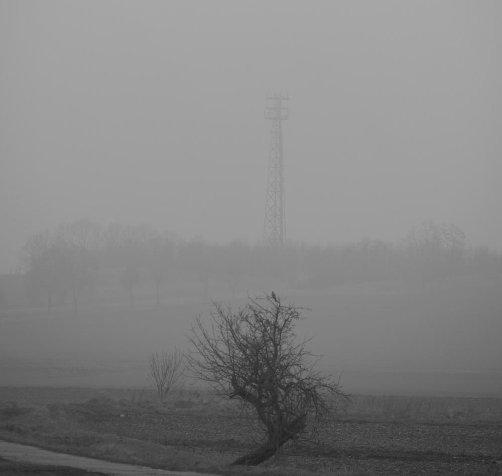Das s/w-Foto ist eine Landschaftsaufnahme im Nebel, im Vordergrund sieht man einen verkrüppelten Obstbaum ohne Blätter, auf dem ein Vogel sitzt. Im Hintergrund verschwindet ein Gittermast für Mobilfunk im Nebel.