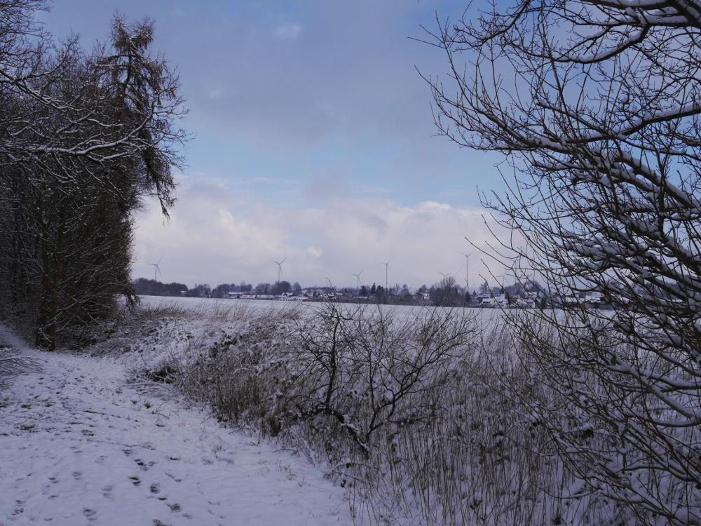 Eine Winterlandschaft, zwischen den Bäumen sieht man im Hintergrund ein Dorf und darüber/dahinter Windkraftanlagen.