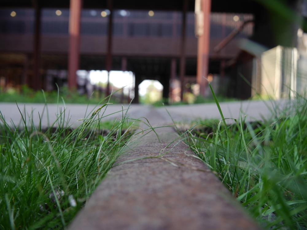 Das Foto ist entlang einer Schiene aufgenommen, man sieht das Gras, welches über die Schiene wächst. Der Hintergrund verschwindet in der Unschärfe...