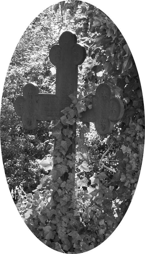 Das s/w-Foto zeigt ein altes, von Efeu zum Teil schon überwuchertes, Grabkreuz