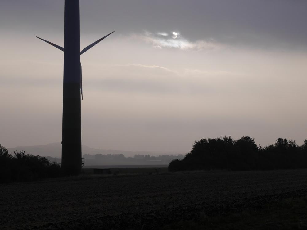 Das Foto zeigt eine Landschaftsaufnahme bei Nebel und Dunst, man erkennt Büsche und Windräder