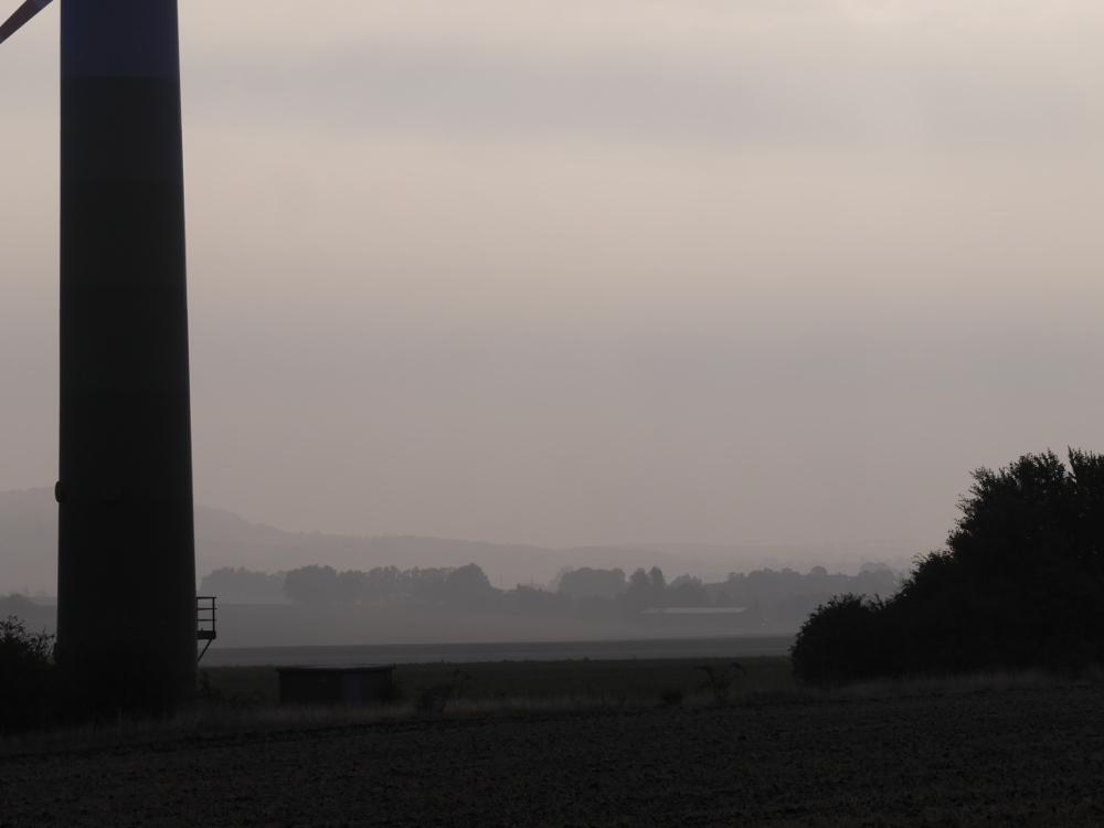 Das Foto zeigt eine Landschaftsaufnahme bei Nebel und Dunst, man erkennt Büsche und Windräder, im Hintergrund ist der Heseberg zu erahnen