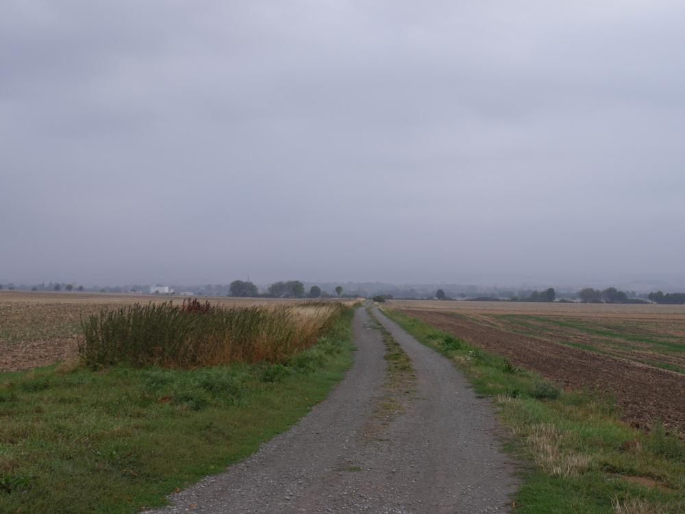 Blick in Richtung Schöppenstedt bei Nebel