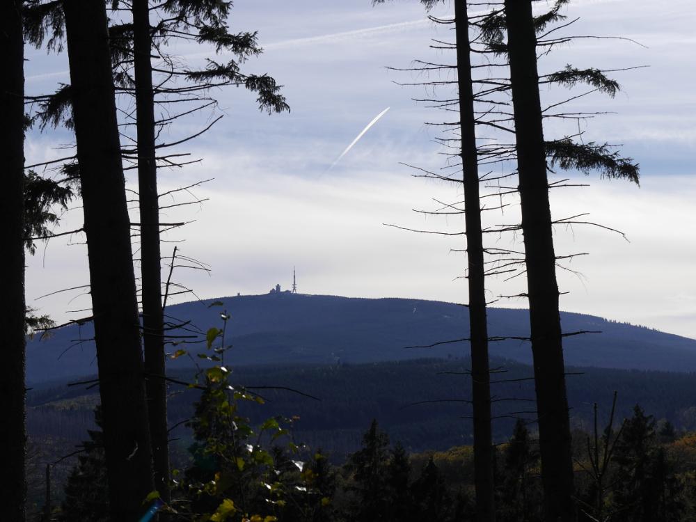 Dasa Foto zeigt den Blick zwischen Bäumen hindurch zum Brocken, man kann den Funkturm auf dem Brocken erkennen.