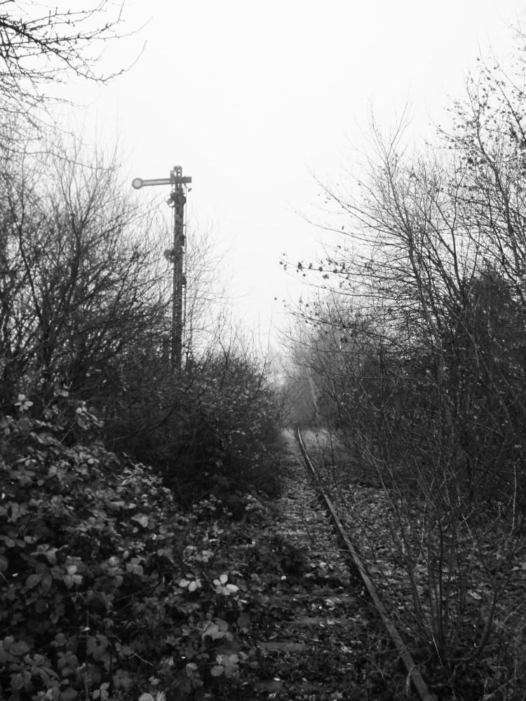 Das s/w-Foto zeigt ein von Büschen überwachsenes Eisenbahngleis. Links vom Gleis steht ein Form-Hauptsignal, welches den Haltbegriff anzeigt.