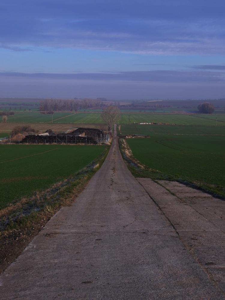 Das Foto zeigt einen Feldweg, der den Berg hinunter führt...