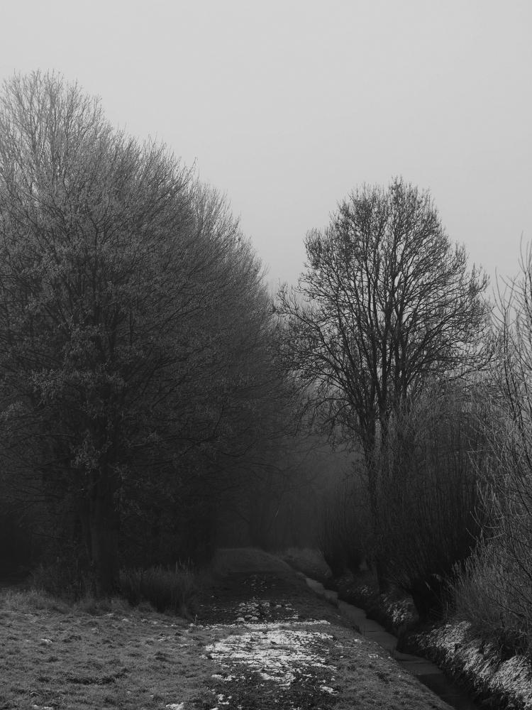 Eine s/w-Landschaftsaufnahme von einem kleinen Bach bei Nebel, Links vom Bach ist etwas Rasen, man sieht Bäume und ein wenig Schnee.