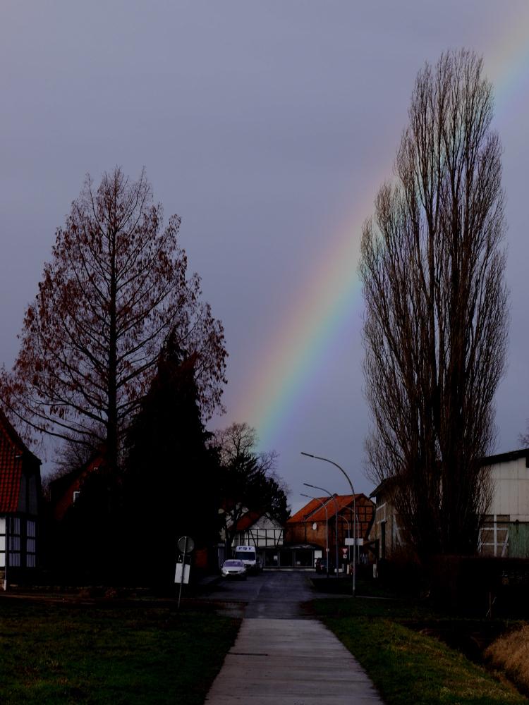 Das Foto zeigt einen Regenbogen über einer Straße im Dorf, rechts und links sieht man Bäume