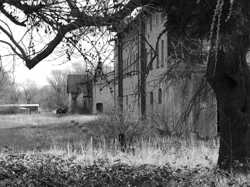 Foto auf dem ehem. Industriegelände in Mattierzoll. Auf der rechten Seite sind die alten, leerstehenden Industriegebäude