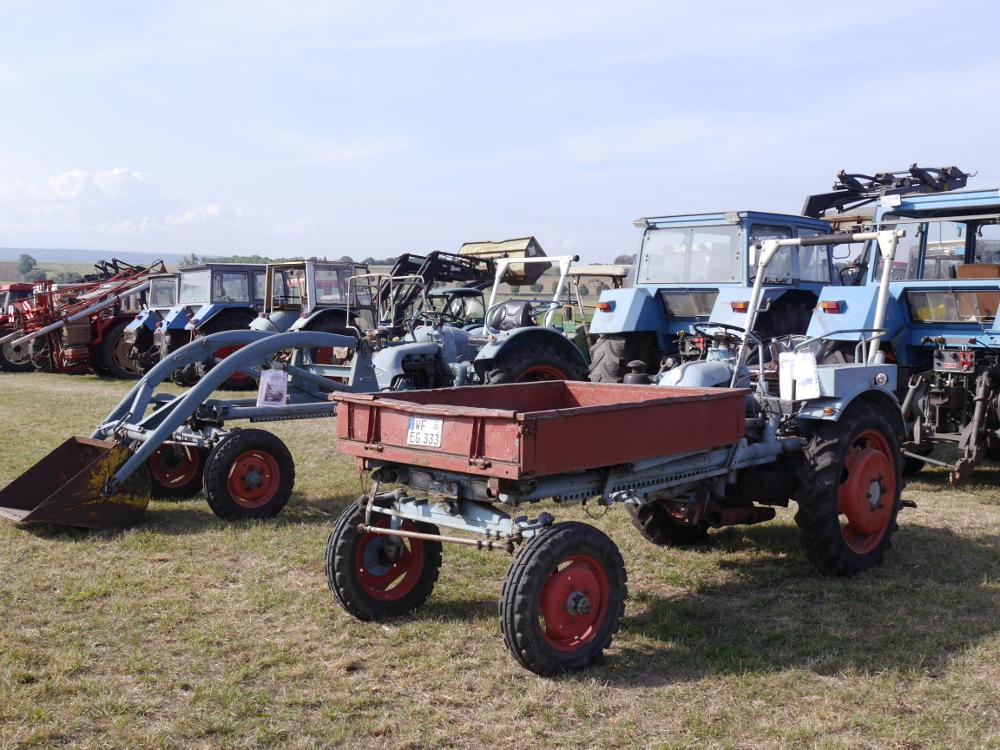 Dsa Foto zeigt eine Reihe von Traktoren, im Vordergrund steht ein Oldtimer, der eine Ladefläche vorne hat.