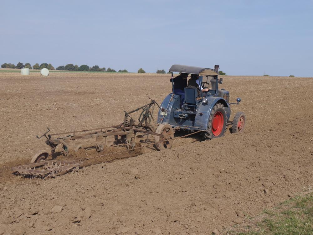 Dsa BIld zeigt einen Lanz-Bulldog-Traktor mit einem alten Pflug beim pflügen auf dem Acker