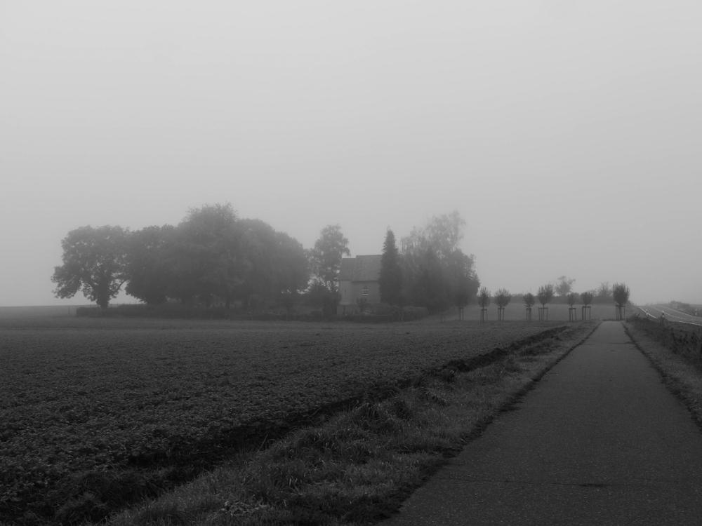 Das s/w-Foto zeigt den Friedhof von Groß Winnigstedt im Nebel. Rechts kann man den Radweg zum Friedhof und ein wenig Straße erkennen.
