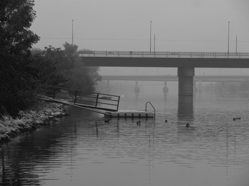Das s/w-Foto zeigt einen Blick entlng der Donau, man sieht eine Badeinsel, darum enten und im Hintergrund mehrere Brücken, die im Nebel verschwinden