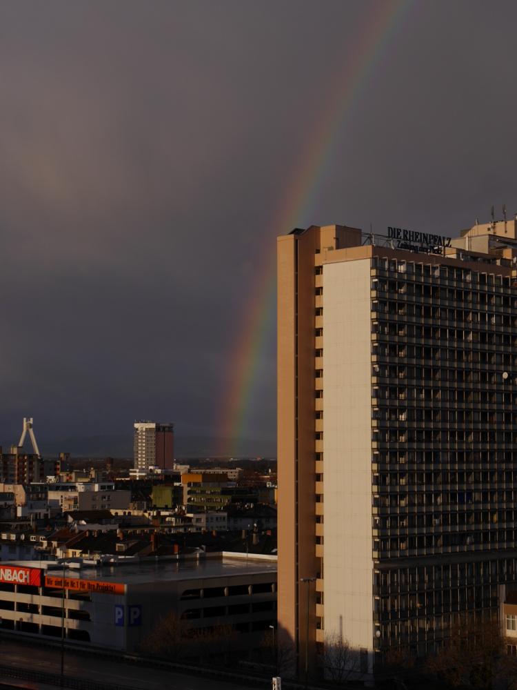 Das Foto zeigt einen Regenbogen über der Stadt Ludwigshafen, der Regenbogen kratzt die Spitze von einem Hochhaus.