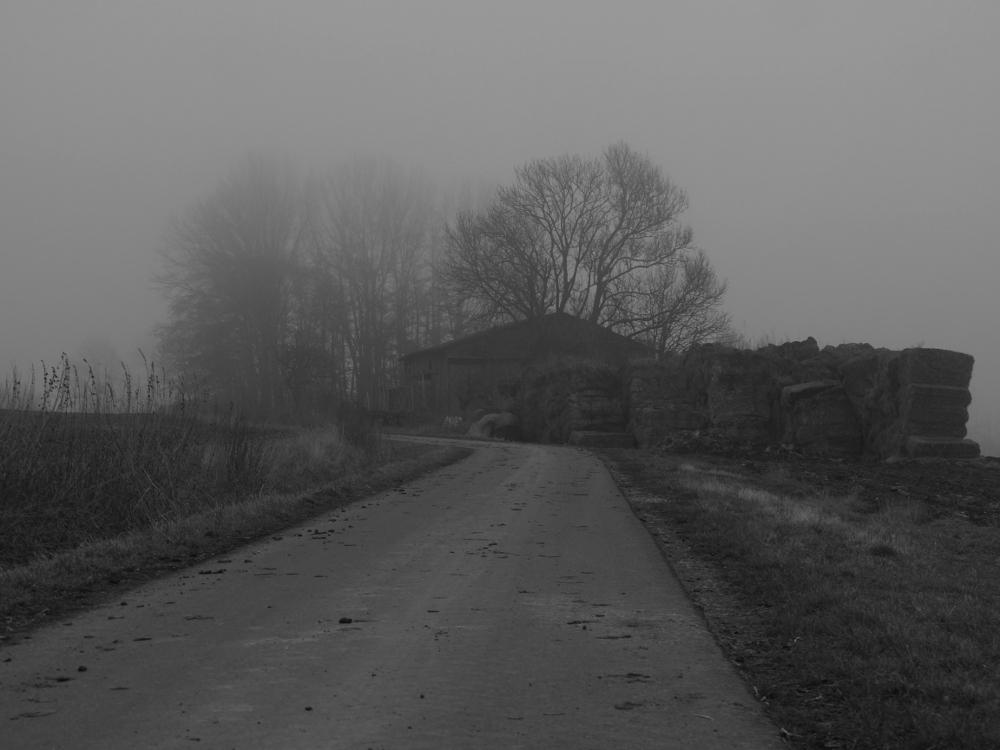 Das s/w-Foto ist von einem Schuppen mit Strohballen davor und Bäumen dahinter an einem Feldweg bei Nebel