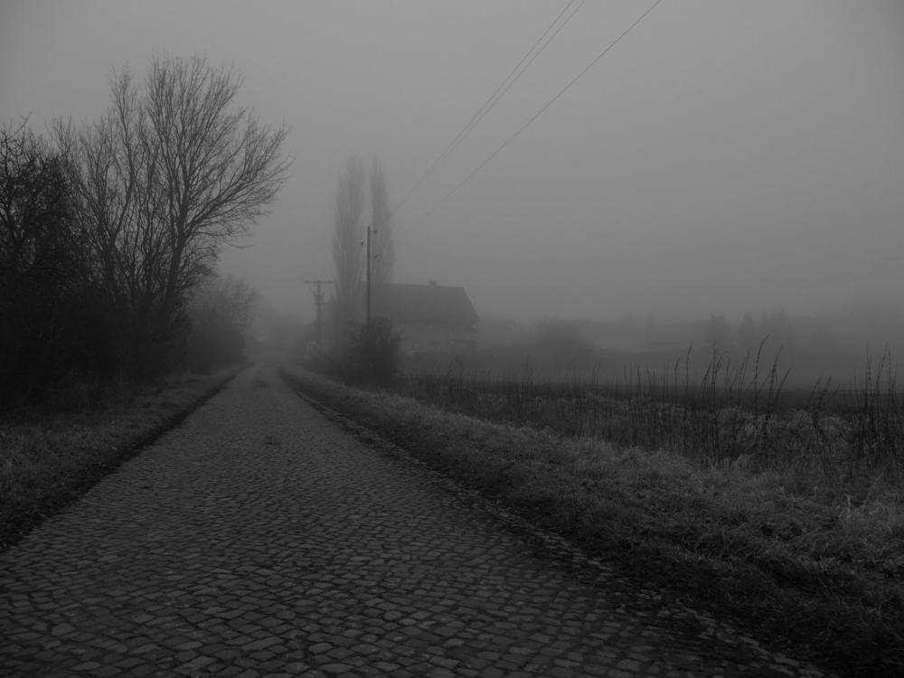 Das s/w-Foto zeigt den Ortsanfang von Roklum von einem gepflasterten Feldweg aus. Am Feldweg stehen Strommasten und man erkennt die Häuser, das Dorf ist aber fast ganz im Nebel versunken