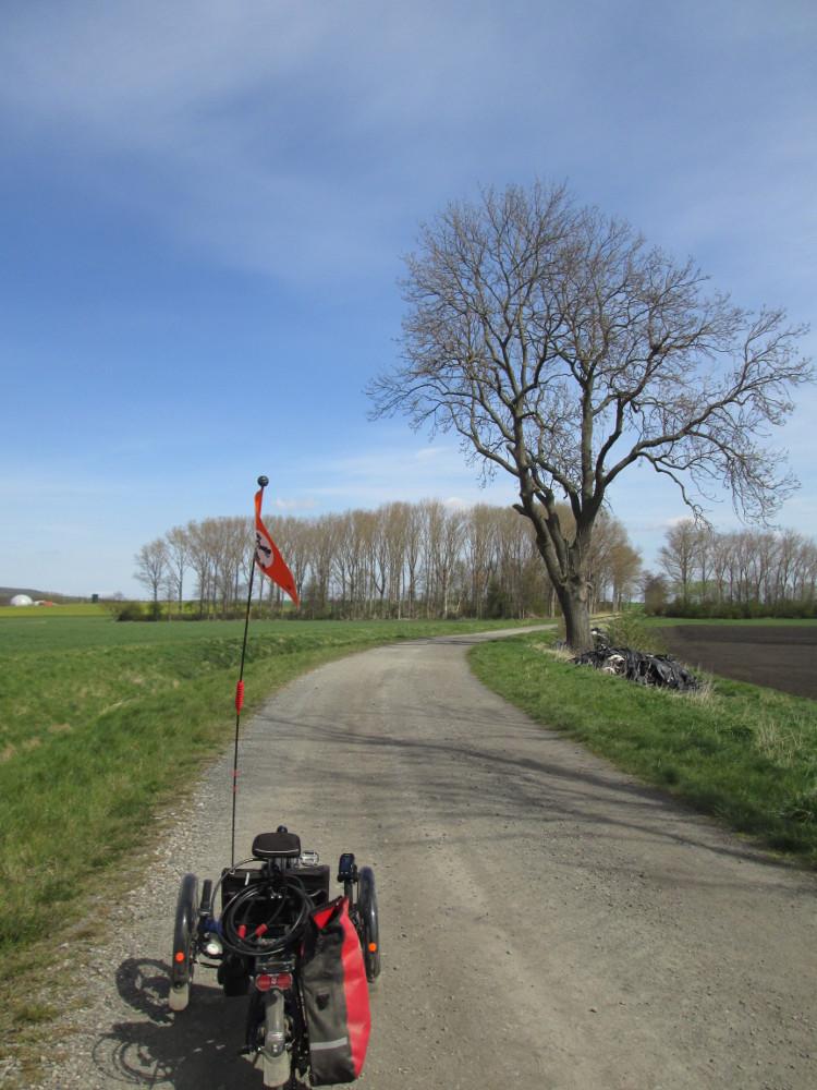 Das Foto zeigt einen Feldweg im großen Bruch, auf dem Feldweg steht ein Liegefahrrad. Der Feldweg macht eine Kurve nach rechts, rechts vom Weg steht ein Baum und weiter hinten eine größere Gruppe Bäume. Links hinter erkennt man eine Biogasanlage
