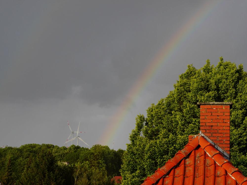 Das Foto zeigt einen Regenbogen, der zwischen Windrädern die Bäume verläasst.