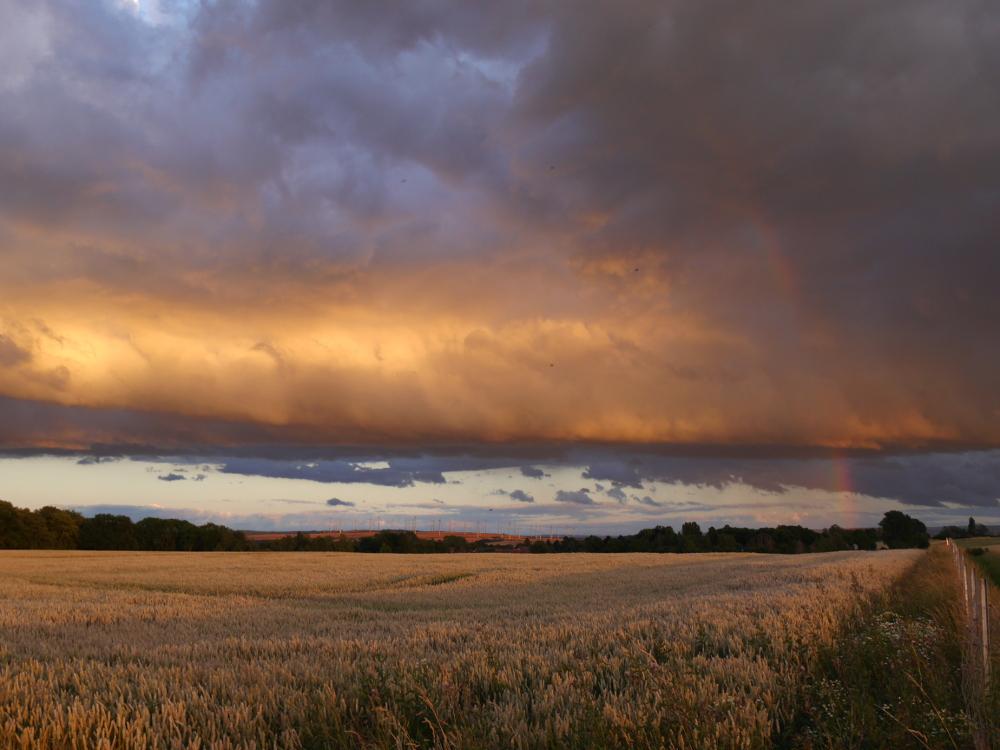 Das Foto zeigt eine Landschaftsaufnahme. Am Himmel sind dicke, dunkle Regenwolken, von Rechts läuft ein Zaun in Richtung Horizont, Links sieht man ein Kornfeld. Im Hintergrund kann man ein Dorf und einen Windpark sehen. Ebenfalls Links ist ganz dünn ein Regenbogen zu erkennen.