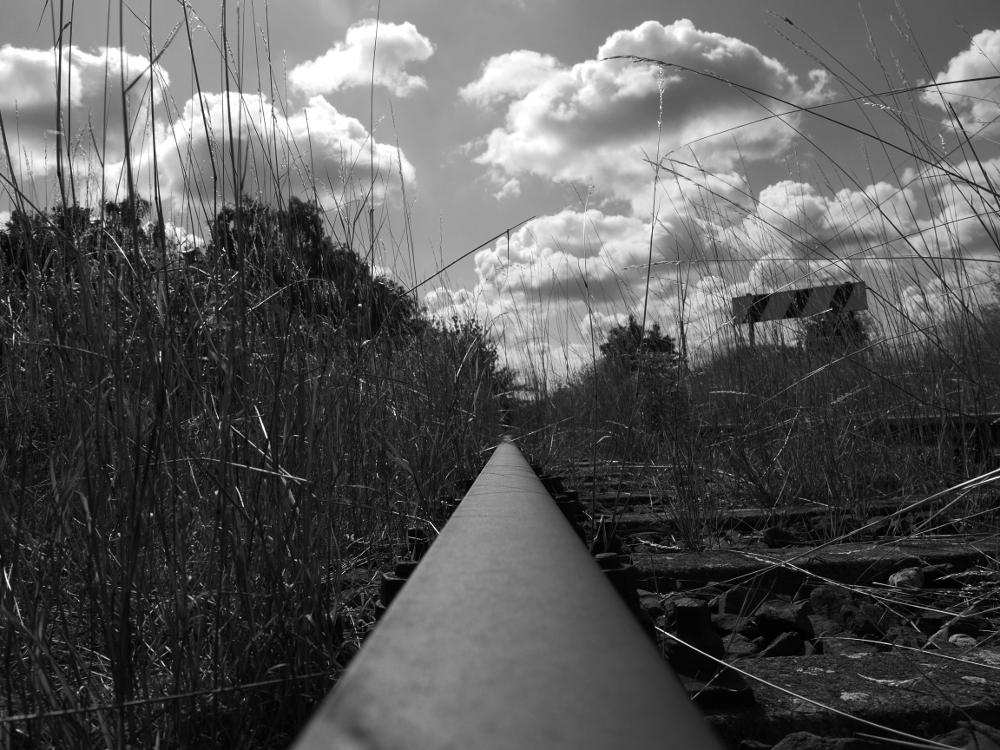 Das s/w-Foto zeigt die Schiene eines Gleises (Aufnahme auf der Schiene), welches nicht mehr befahren wird und wo deswegen hohes Gras neben dem Gleis wächst. Rechts sieht man eine Signaltafel und am Horizont sind viele Wolken.