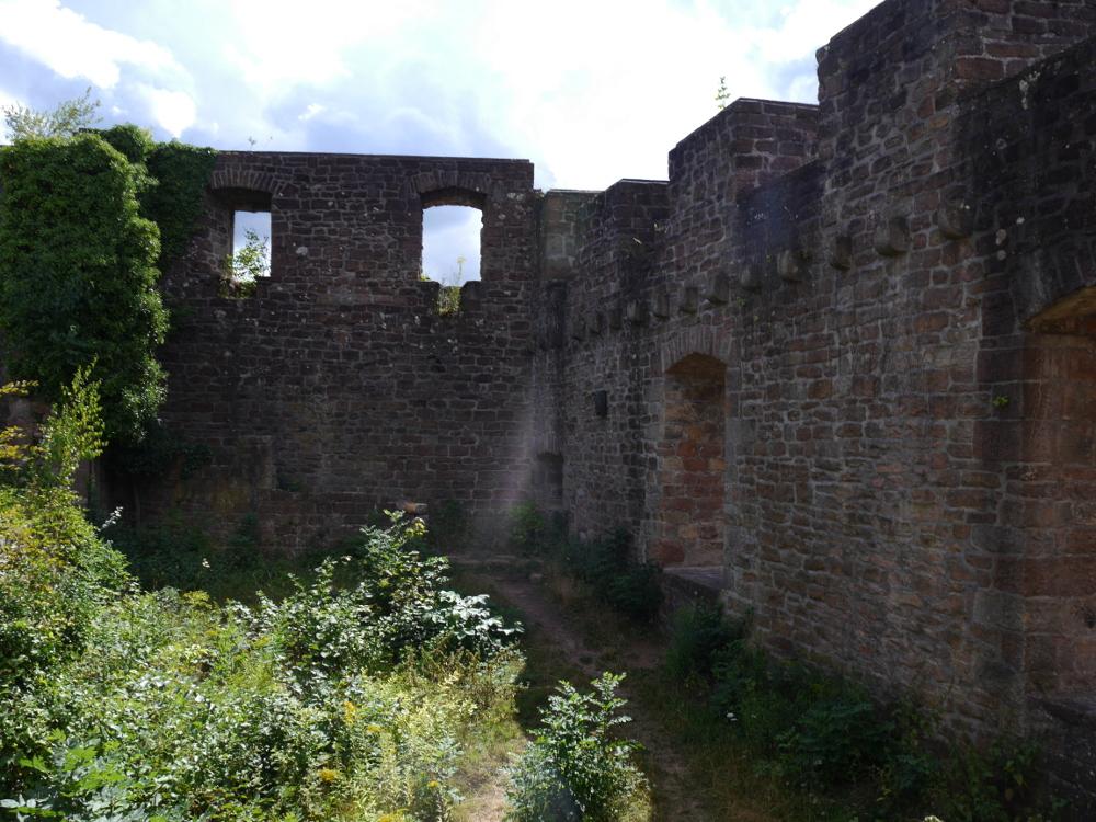 Das Bild zeigt die Mauern der Burgruine mit den alten Fensterlöchern.