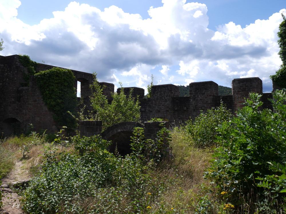 Das Bild zeigt die alten, teilweise überwucherten Gemäuer der Wolfsburg. Etwa in der MItte ist der Eingang zu einer Art Tunnel