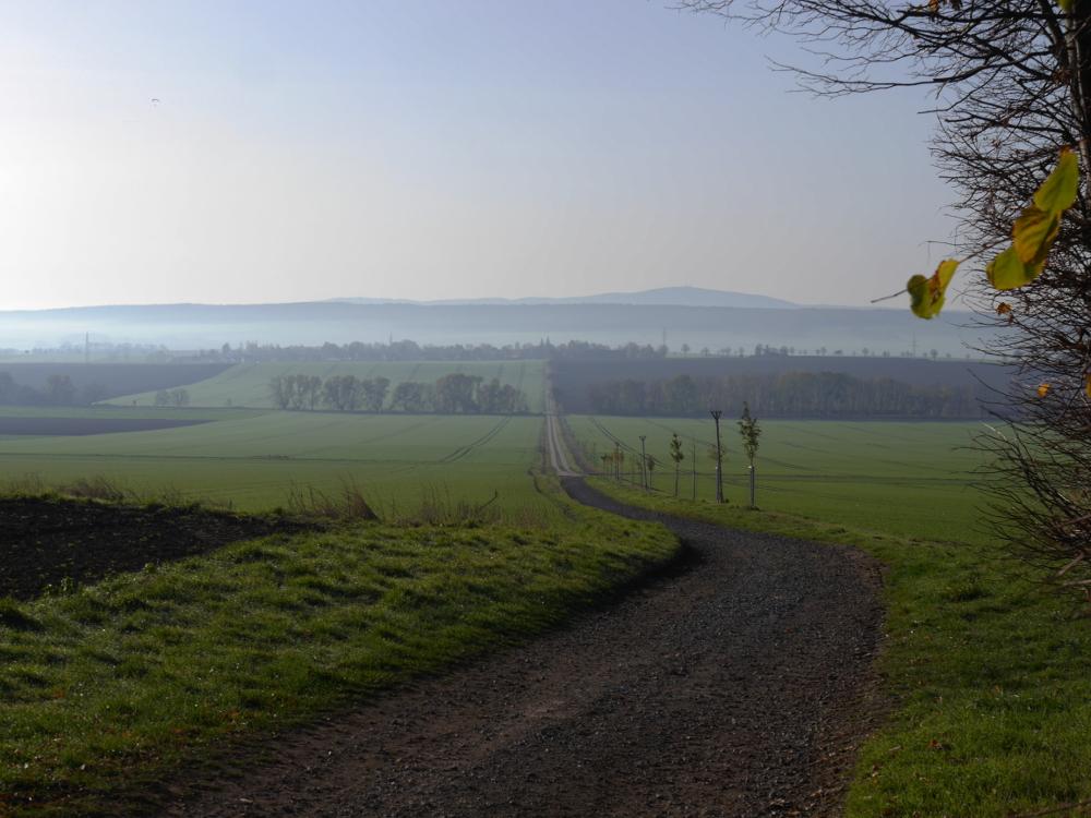 Eine Landschaftsaufnahme von eine Berg aus, den Berg runter führt etwa in der Mitte ein Feldweg, man sieht Baumreihen und rechts vom Weg Bäume und Büsche. Im Hintergrund ein Dorf, und am oder hinter dem Dorf fängt der Nebel an.
