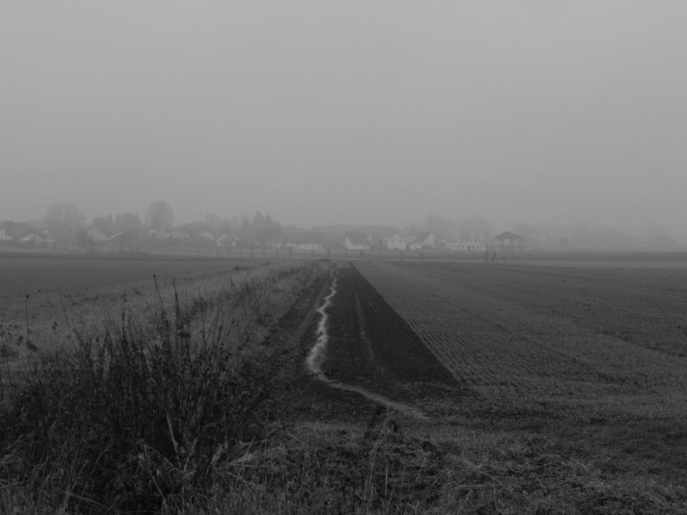 Eine Landfschaftsaufnahme bei Regen und Nebel, man sieht wie sich ds Wasser einen Pfad über den Acker gesucht hat, im Hintergrund verschwinden die Häuser des Dorfes Roklum im Nebel