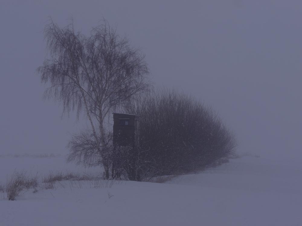 Das Foto zeigt bei Schnee und Nebel einen Hochsitz für Jäger und dahinter Buschwerk