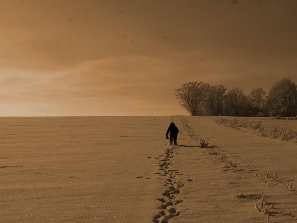 Eine Landschaftsaufnahme im Winter, eine Frau geht bergauf durch den Tiefen Schnee in Richtung eines Wäldchen. Das bild ist leicht gelb-orange eingefärbt.
