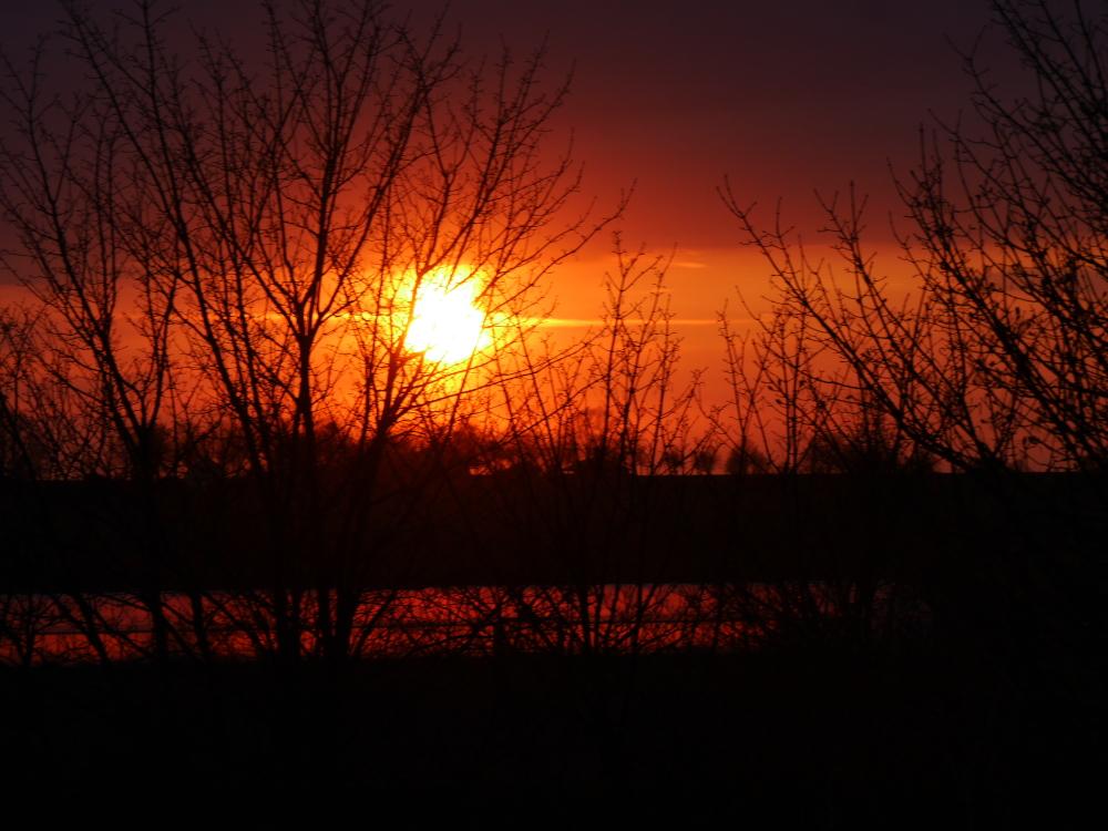 Das Foto zeigt einen dramatischen Sonnenuntergang, die Sonne steht kurz über dem Erdboden und oberhalb der Sonne sind Wolken. Das ganze Bild ist Orange-Rot eingefärbt. Die Sonne ist hinter kahlen Bäumen die als Silouetten zu erkennen sind.